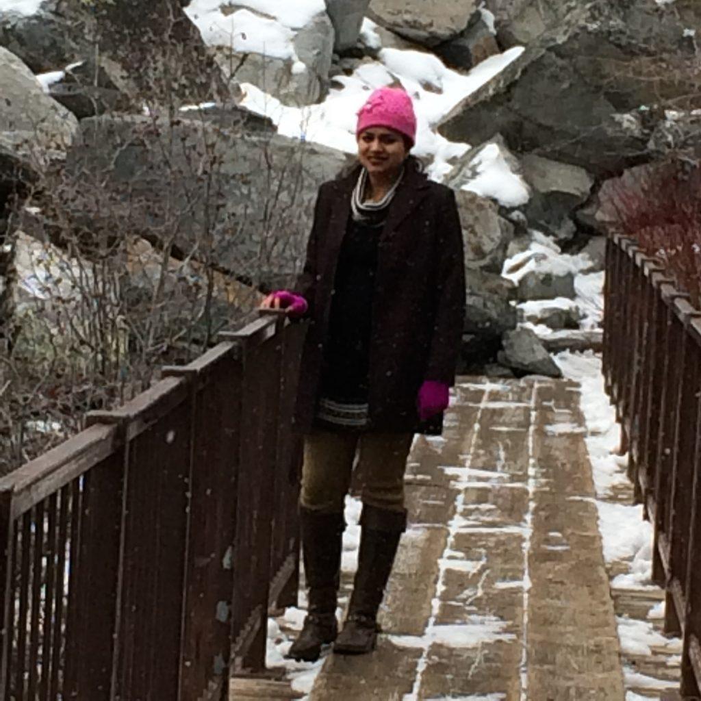 Snowfall @eagle Upper falls bridge